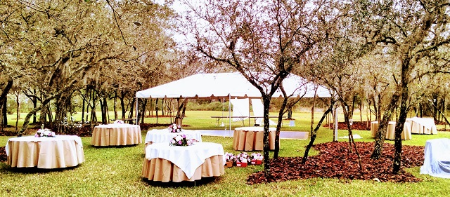 60 INCH ROUND TABLES WITH LINENS ON THEM AND 15X30 CALIFORNIA FRAME TENT