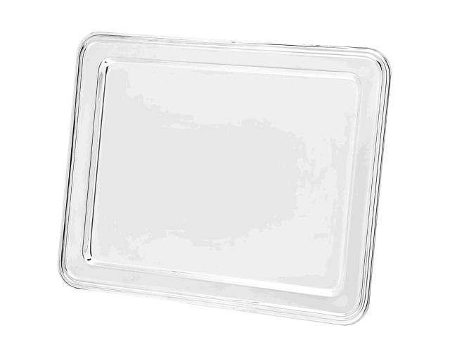 Where to find SS 18  RECTANGLE TRAY in Winter Haven