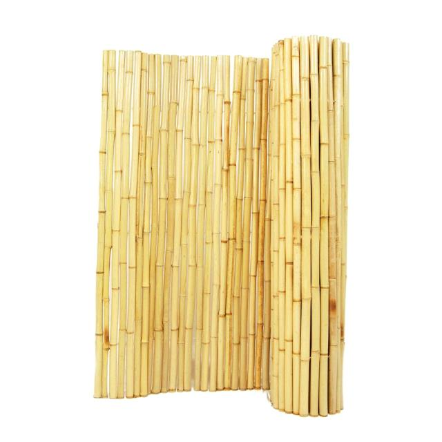 Where to find BAMBOO WALL in Winter Haven