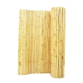 Rental store for BAMBOO WALL in Winter Haven FL