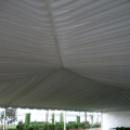 Rental store for TENT LINER 40X60 FRAME in Winter Haven FL